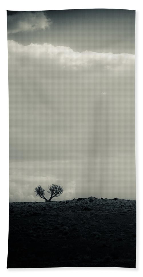 Tree Hand Towel featuring the photograph Small In A Large World by Scott Sawyer