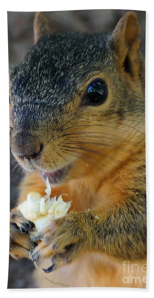 Squirrel Bath Sheet featuring the photograph Smiley by Lori Tordsen