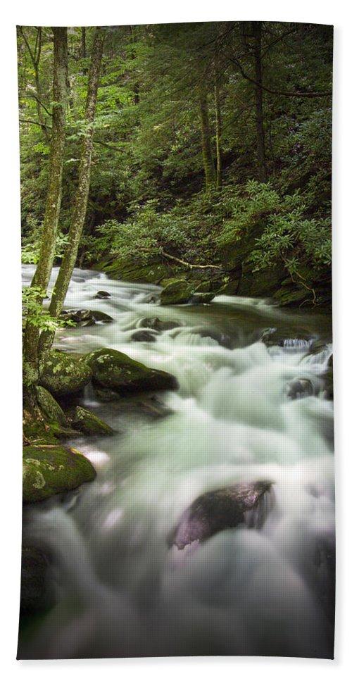 Art Bath Sheet featuring the photograph Smokey Mountain Stream No.312 by Randall Nyhof