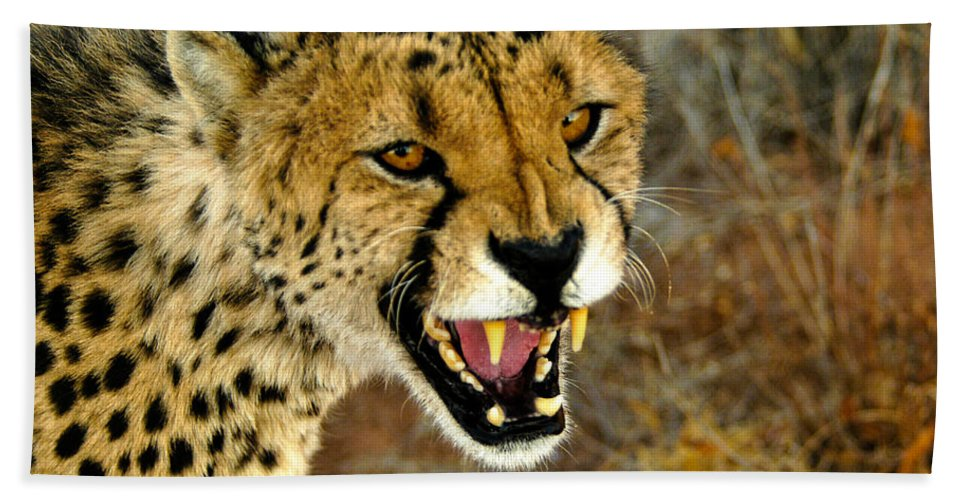 Acinonyx Jubatus Hand Towel featuring the photograph Snarl by Alistair Lyne