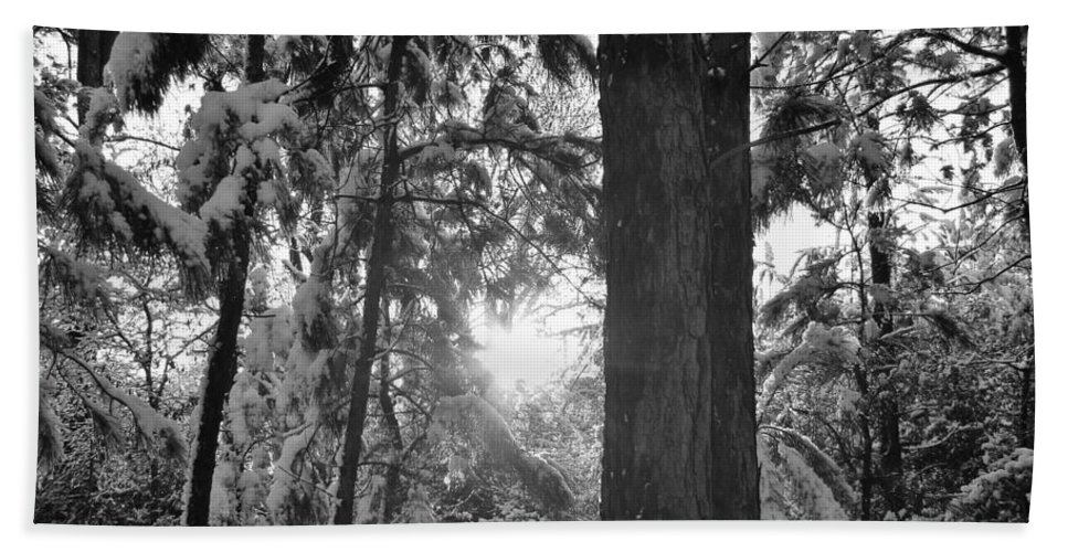 Snow Bath Sheet featuring the photograph Snowy Forest Bw by Michael MacGregor