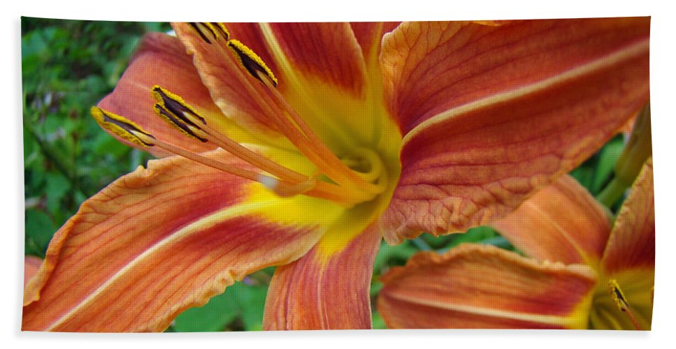 Daylily Hand Towel featuring the photograph Soaking Up The Sun - Orange Daylily by Mother Nature