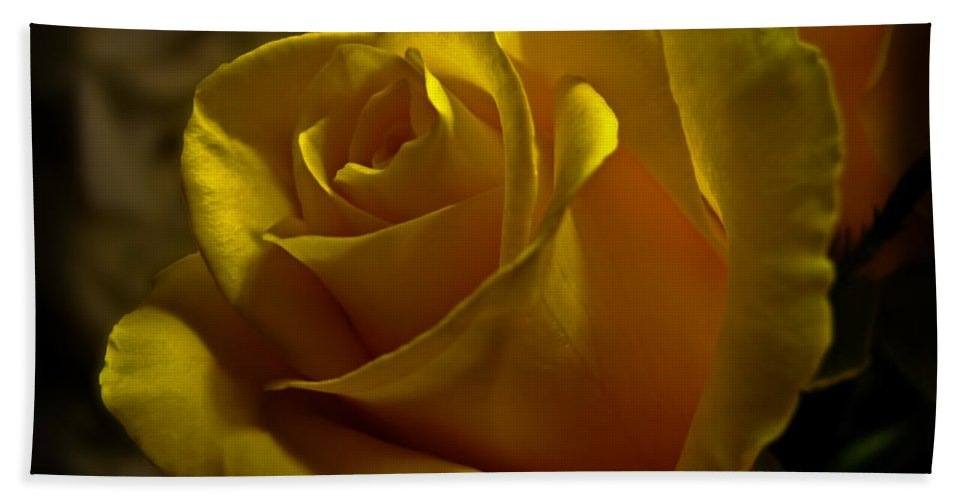 Nature Bath Sheet featuring the photograph Softly Lit by Debbie Portwood