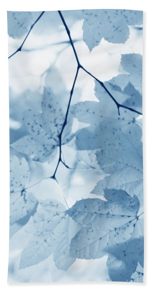 Leaf Hand Towel featuring the photograph Softness Of Blue Leaves by Jennie Marie Schell