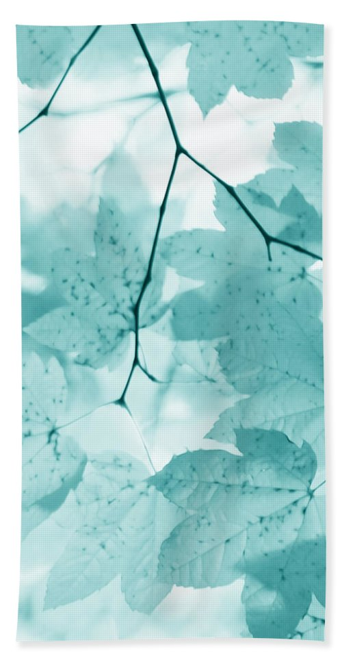Leaf Hand Towel featuring the photograph Softness Of Teal Maple Leaves by Jennie Marie Schell