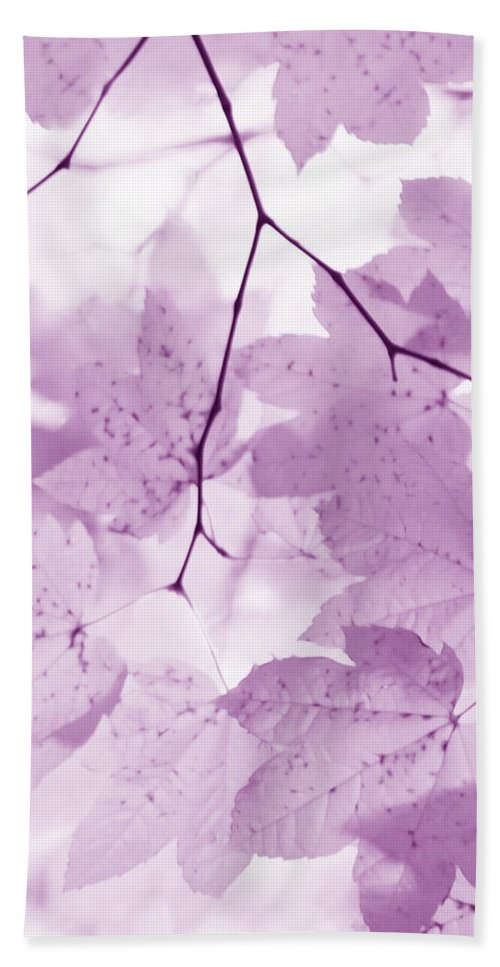 Leaf Hand Towel featuring the photograph Softness Of Violet Maple Leaves by Jennie Marie Schell