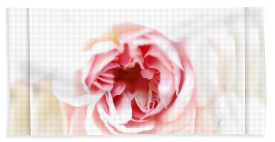 Pink Rose Bath Sheet featuring the photograph Speak To Me Softly by Saija Lehtonen