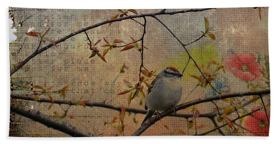 Spring Bath Sheet featuring the photograph Spring Bird by Todd Hostetter
