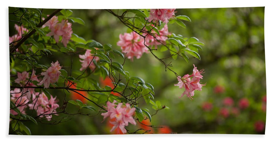 Rhodies Bath Sheet featuring the photograph Sprinkled Amongst by Mike Reid
