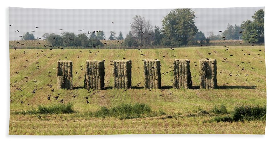 Farm Hand Towel featuring the photograph Square Hay Bales by J McCombie