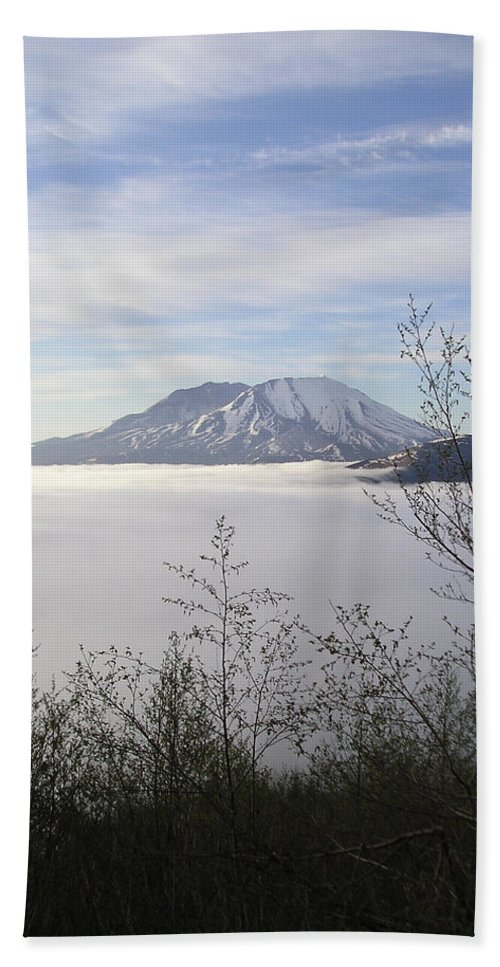 Fog Bath Sheet featuring the photograph St Helens Fog Trees by Catherine Helmick