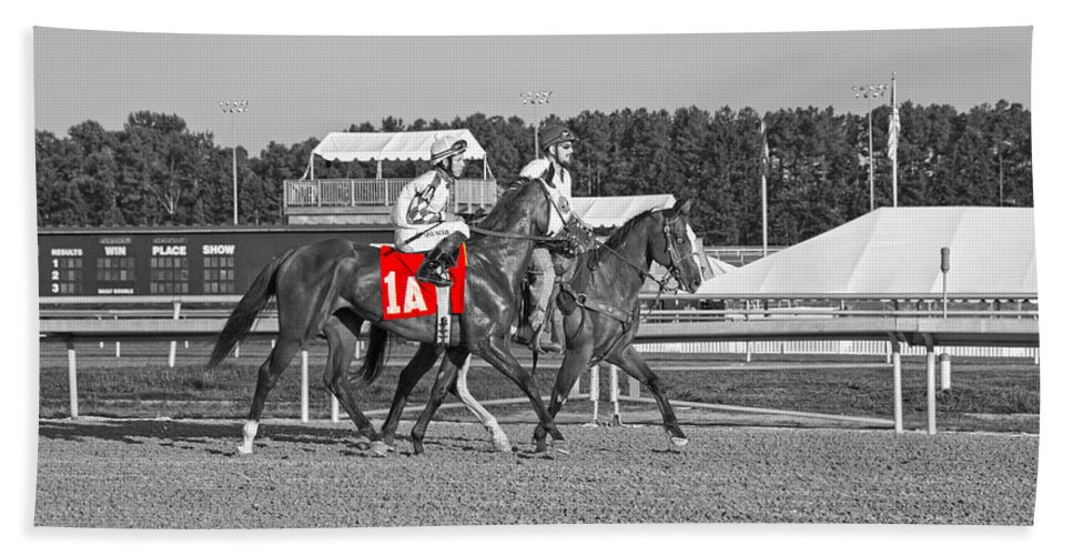 Horse Bath Sheet featuring the photograph Standing Out by Betsy Knapp