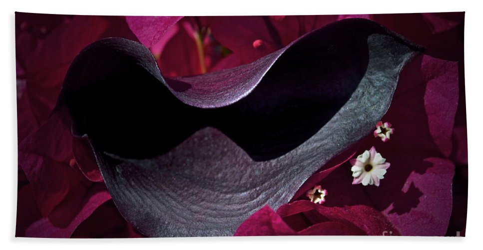 Calla Lilly Bath Sheet featuring the photograph Standing Out by Gwyn Newcombe