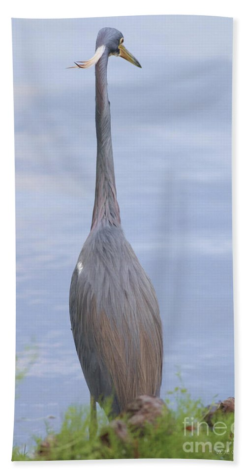 Heron Bath Sheet featuring the photograph Staring Into The Blue by Deborah Benoit