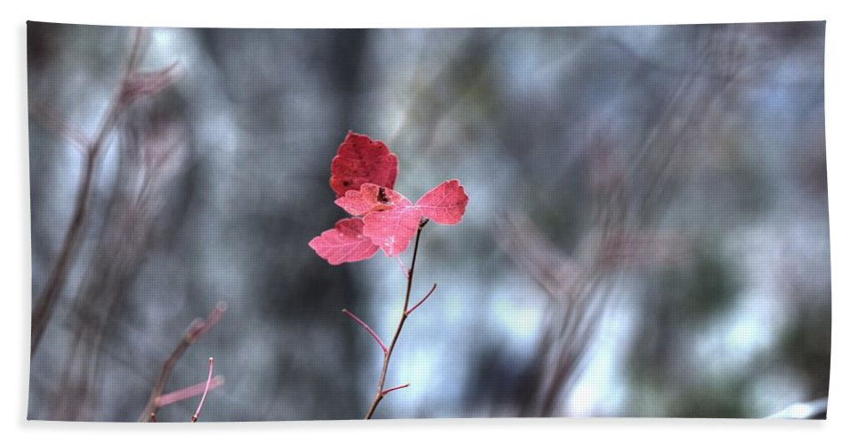 Red Hand Towel featuring the photograph Still Amid Transition by Bill Tiepelman