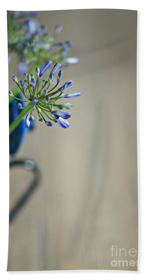 Still Hand Towel featuring the photograph Still Life 02 by Nailia Schwarz