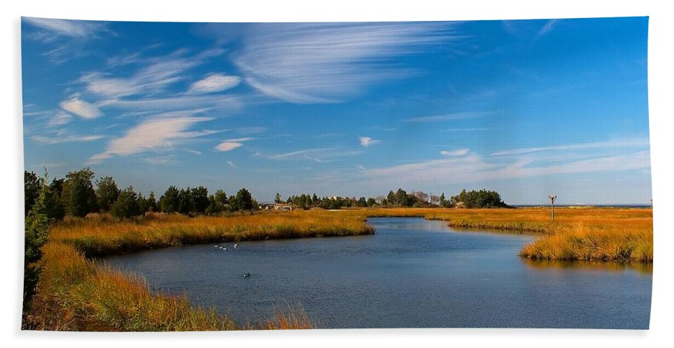 Stream Hand Towel featuring the photograph Still Waters by Nick Zelinsky
