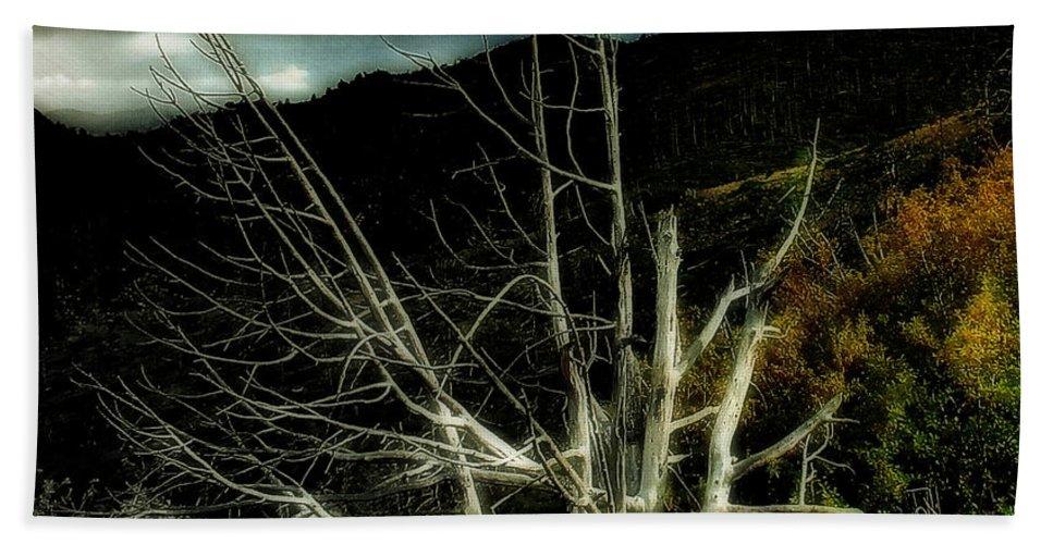 Dead Tree Bath Sheet featuring the photograph Storm Over The Jemez Mountains by Ellen Heaverlo