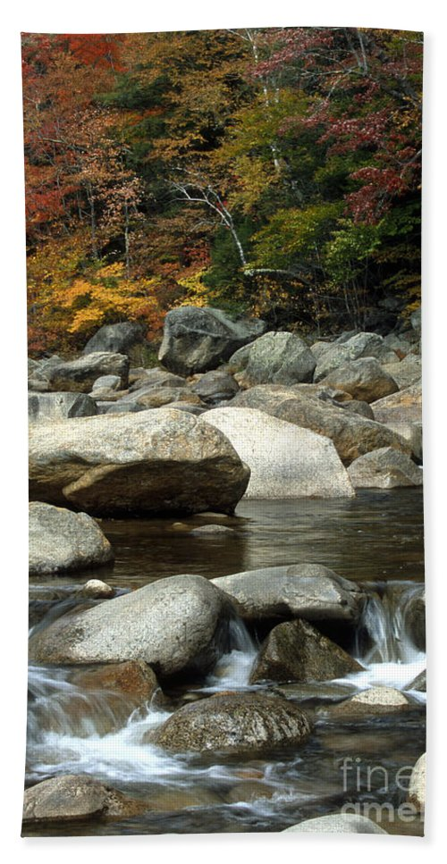 New Hampshire Hand Towel featuring the photograph Streamside Color by Sandra Bronstein