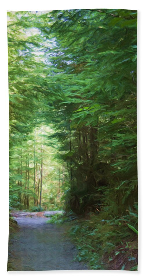 Quinault Bath Sheet featuring the photograph Stroll Through The Quinault Rain Forest by Heidi Smith