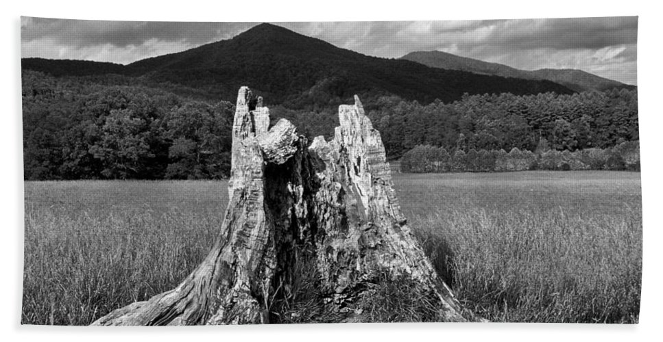 Stump. Tree Field Bath Sheet featuring the photograph Stump In A Field by Greg Matchick
