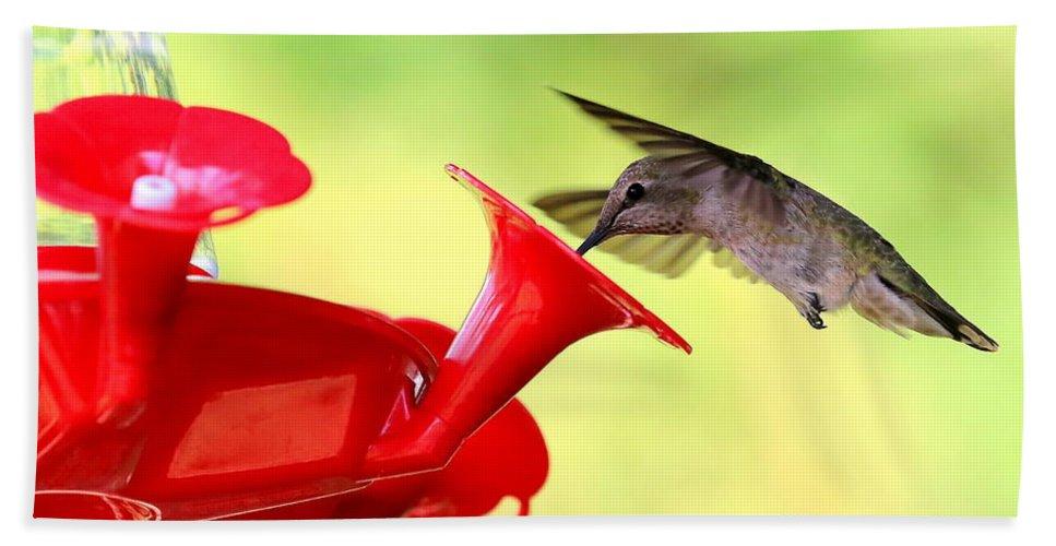 Hummingbird Bath Sheet featuring the photograph Summer Fun Hummingbird by Carol Groenen