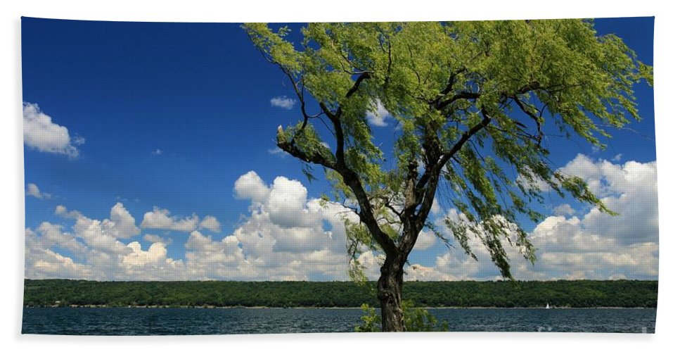 Taughannock Falls State Park Hand Towel featuring the photograph Summer Picnic by Adam Jewell