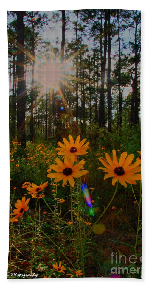 Sunburst Hand Towel featuring the photograph Sunburst On Sunflowers by Barbara Bowen