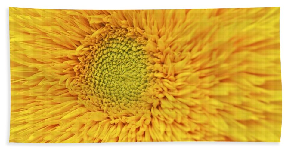Sunflower Hand Towel featuring the photograph Sunflower 2881 by Michael Peychich