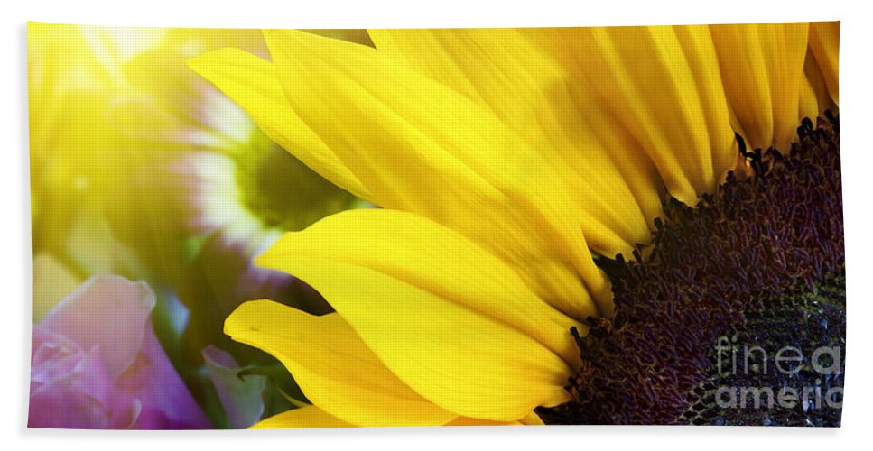 Sunflower Hand Towel featuring the photograph Sunflower Closeup In Landscape by Simon Bratt Photography LRPS