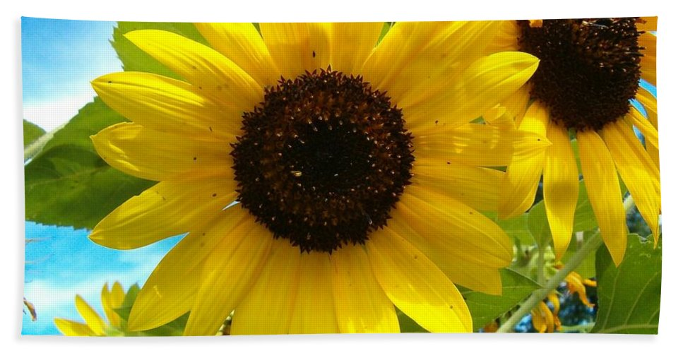 Sunflower Bath Sheet featuring the photograph Sunflower Medley by Sara Raber