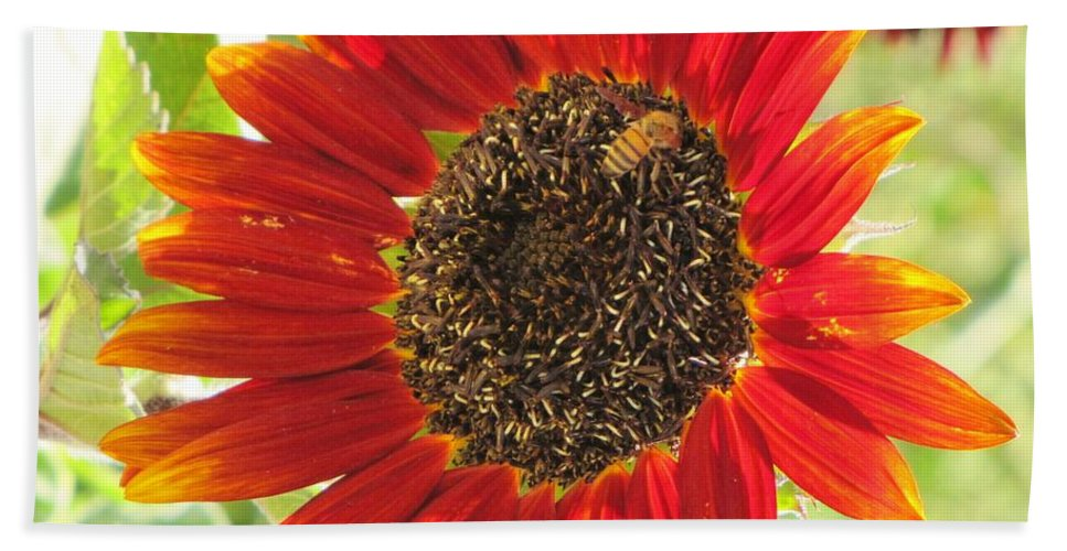 Sunflowers Bath Sheet featuring the photograph Sunflower With Bee by Michelle Cassella