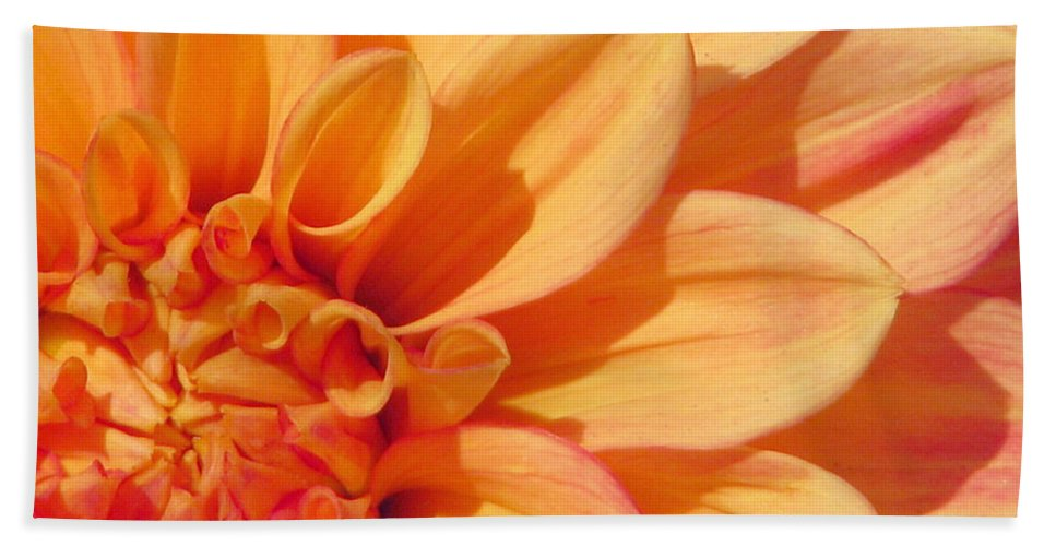Dahlia Bath Sheet featuring the photograph Sunglow by Rory Sagner