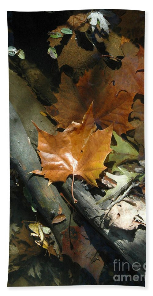 Leaves Bath Sheet featuring the photograph Sunning In The Stream by Trish Hale
