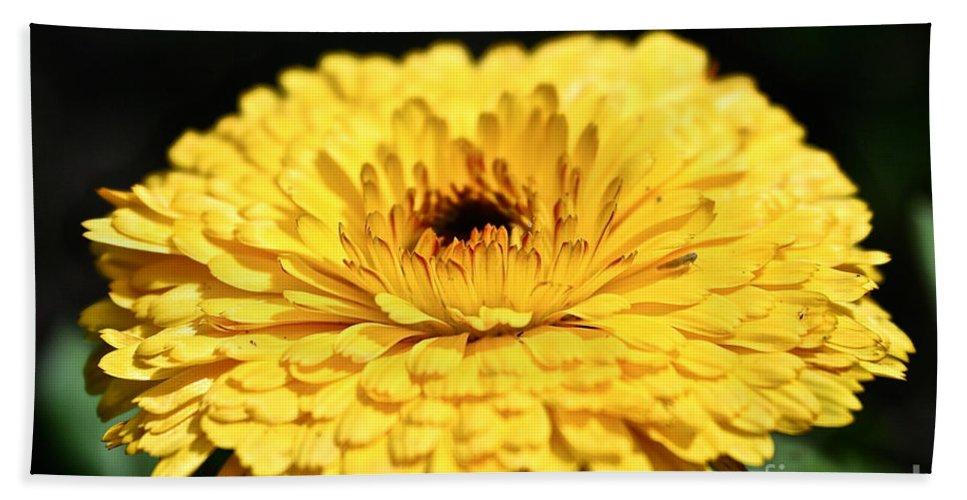 Garden Bath Sheet featuring the photograph Sunny by Susan Herber