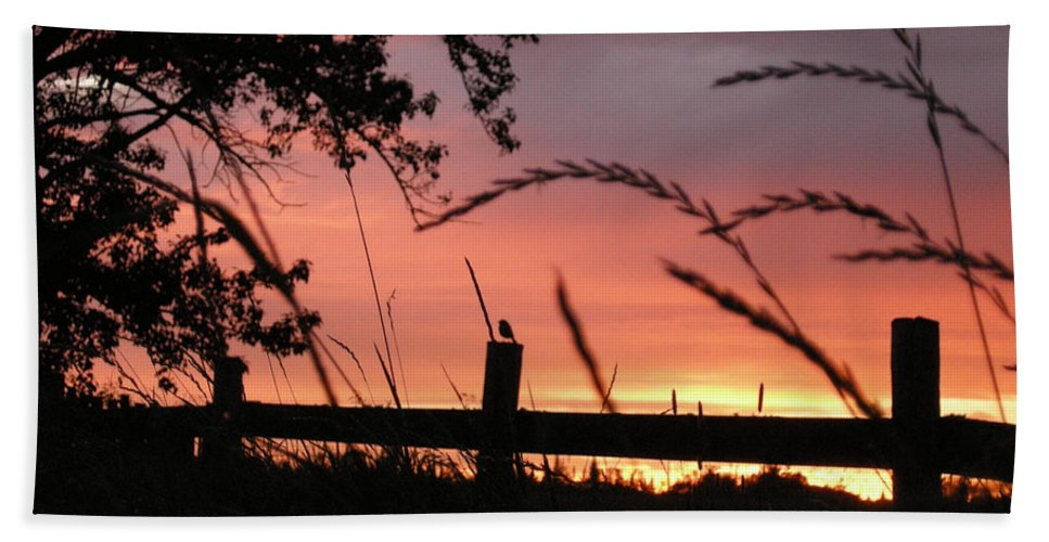 Sunset Hand Towel featuring the photograph Sunset Bird by Leanne Karlstrom