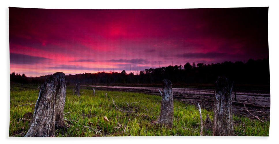 Sunset Bath Sheet featuring the photograph Sunset Stumps by Cale Best