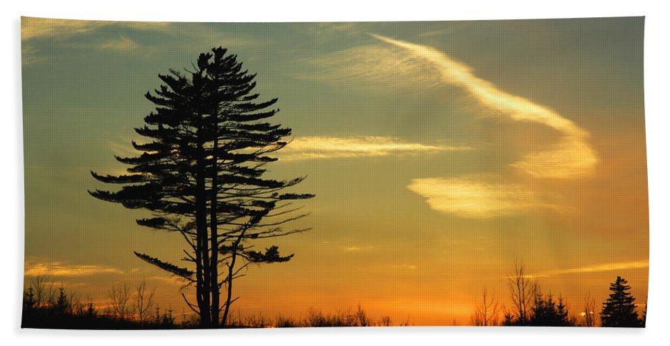 Tree Bath Sheet featuring the photograph Sunset Tree by Jeff Galbraith