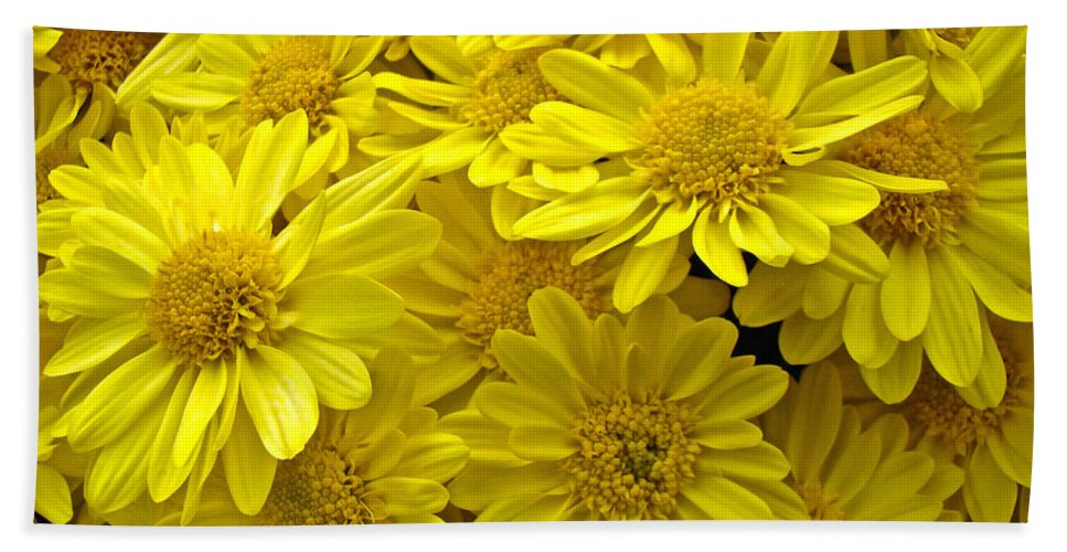 Chrysanthemums Bath Sheet featuring the photograph Sunshine Yellow Chrysanthemums by Mother Nature