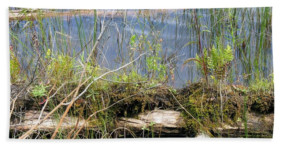 Swamp Log Bath Sheet featuring the photograph Swamp by Sherman Perry