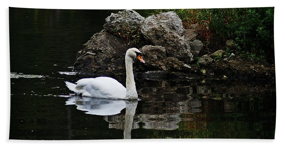 Horn Pond Bath Sheet featuring the photograph Swan I by Joe Faherty