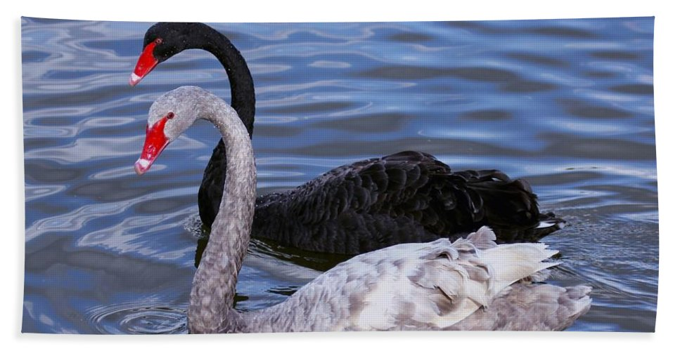 Swans Hand Towel featuring the photograph Swan Lake by Myrna Bradshaw