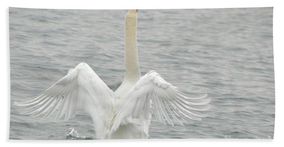Swan Bath Sheet featuring the photograph Swan by Ronald Grogan