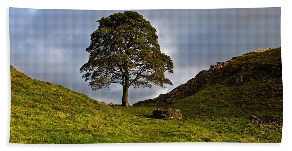 Roman Wall Hand Towel featuring the photograph Sycamore Gap by David Pringle