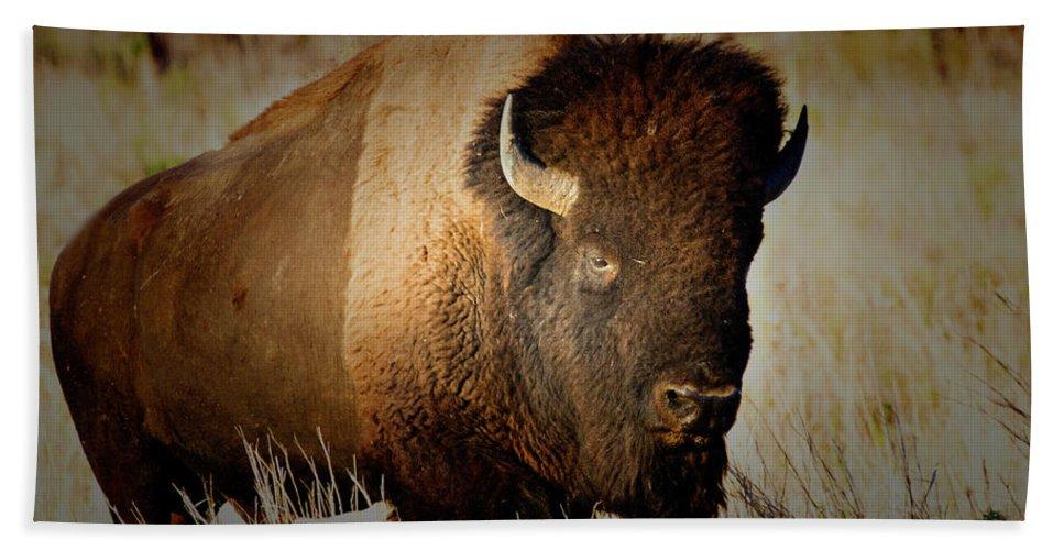 Bull Hand Towel featuring the photograph Taurus by Douglas Barnard