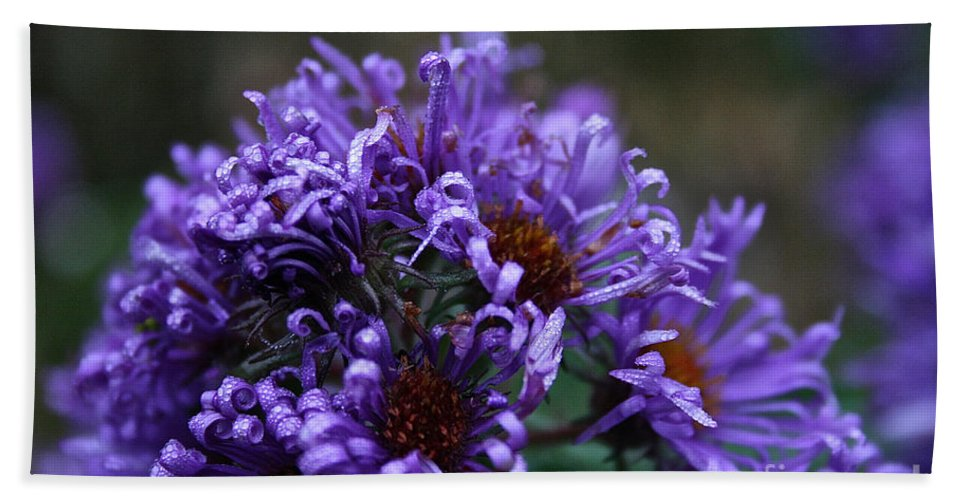 Flower Hand Towel featuring the photograph Tender Tendrils by Susan Herber