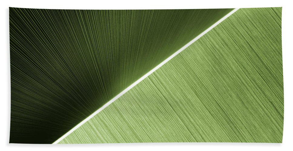 Abstract Bath Sheet featuring the photograph Patterns And Colors. Green. by Ausra Huntington nee Paulauskaite