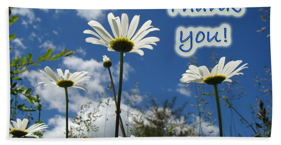 Thanks Bath Sheet featuring the photograph Thank You Greeting Card - Oxeye Daisy Wildflowers by Mother Nature
