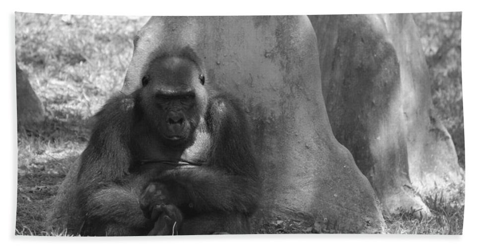 Animal Hand Towel featuring the photograph The Angry Ape In Black And White by Rob Hans