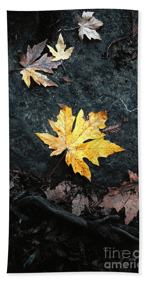 Autumn Hand Towel featuring the photograph The Autumn Leaf by Mike Nellums
